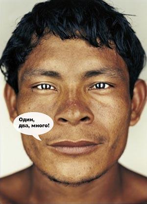 В амазонских джунглях живет племя, в языке которого есть всего три слова для обозначения чисел — «один», «два» и «много»