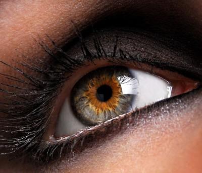 В наших глазах есть «слепое пятно» — место, нечувствительное к свету. Проверьте сами!