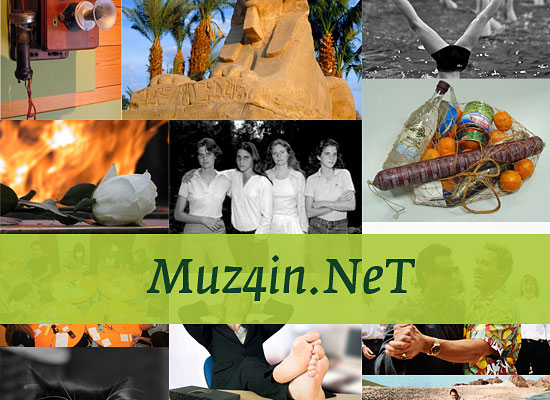 muz4in.net