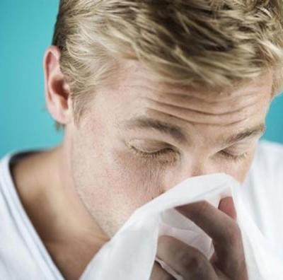 аллергия на животные белки