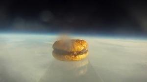 Студенты из Гарварда запустили в космос гамбургер