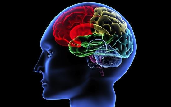 Компьютер способен читать текст прямо из мозга человека