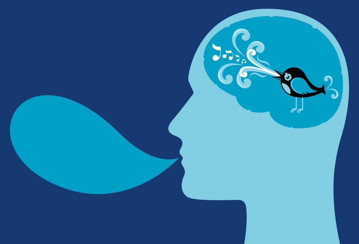 Мозг работает как Твиттер