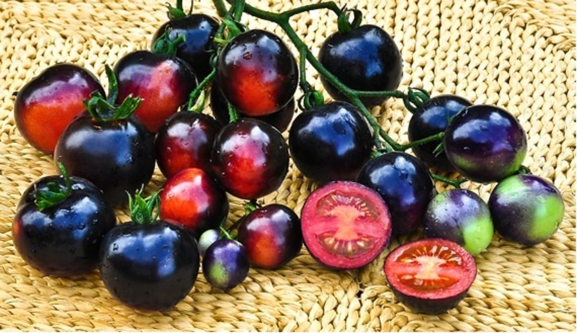 Существуют чёрные помидоры с потрясающим вкусом