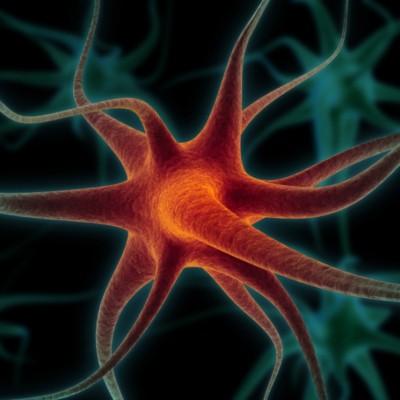 В вашем мозге есть «выключатель сознания»