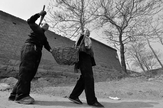 Китайские эко герои: слепой и его безрукий друг посадили  за 10 лет 10 000 деревьев