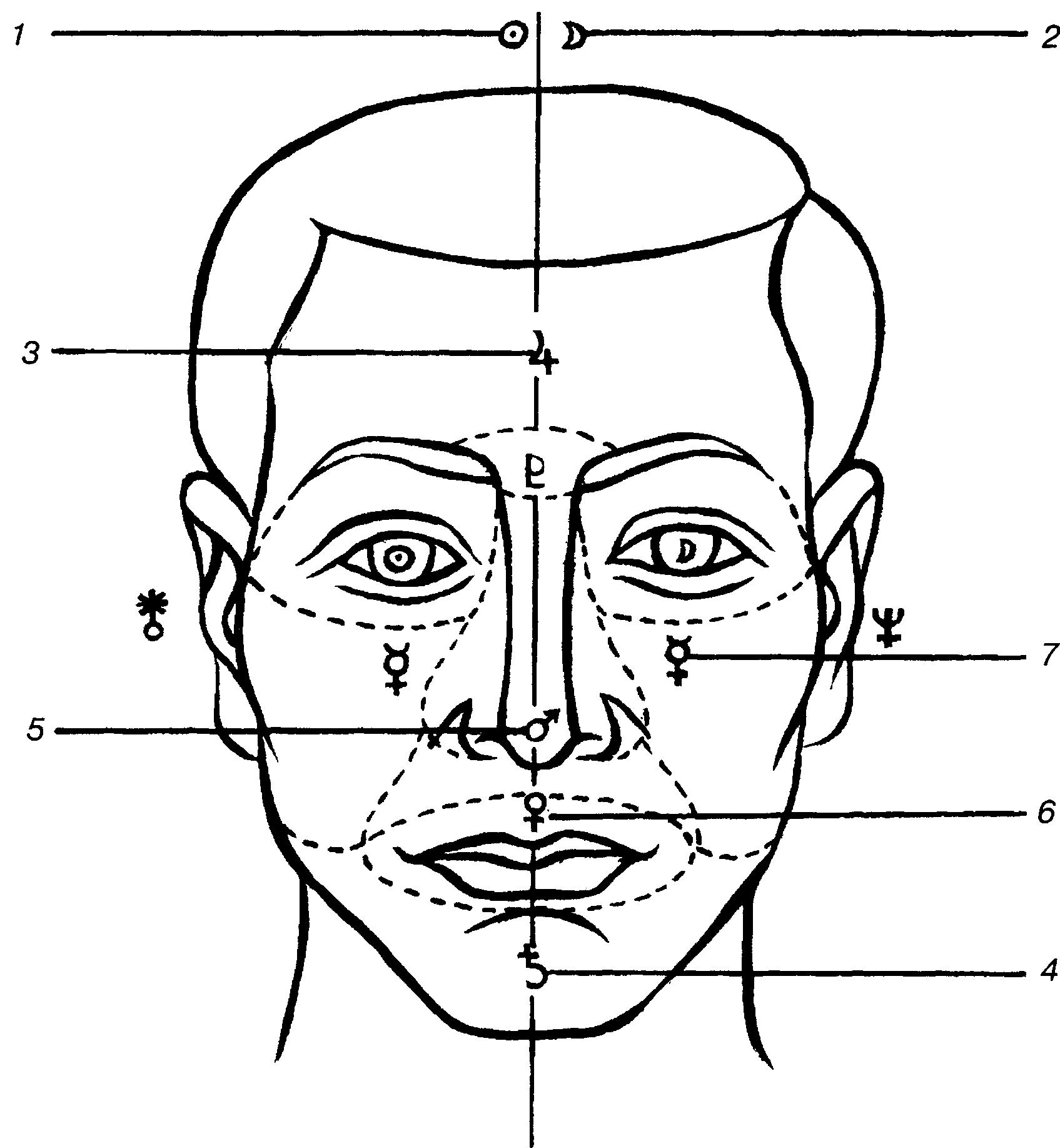 физиогномика глаз картинки стали актуальны образы