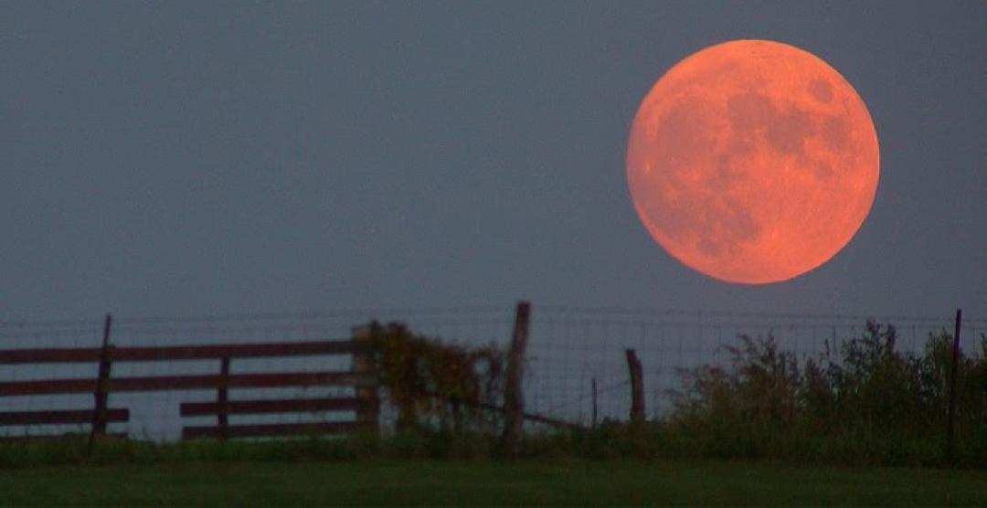1145 виул и последний на Луне
