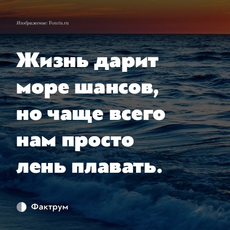 a chance to sea life