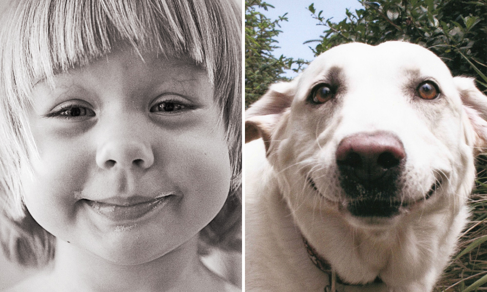 Картинки эмоции людей и животных