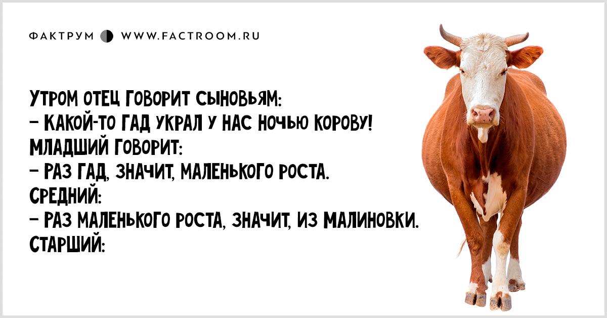 Про Ваську Косого и железную логику. История — отпад!