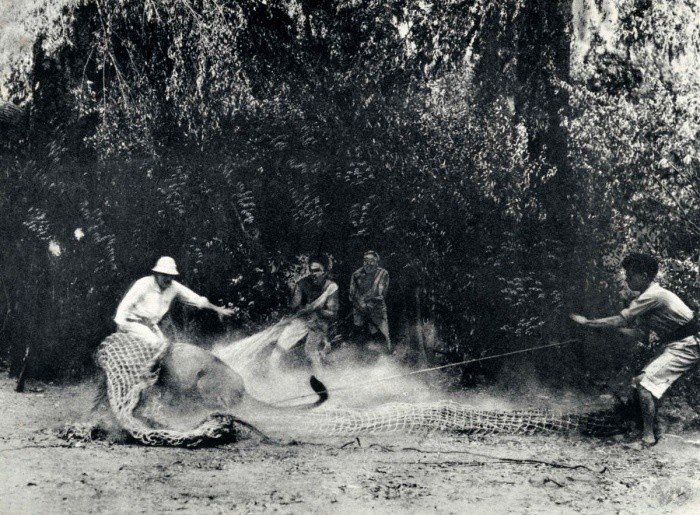 30 удивительных исторических фотографий, которых вы ещё не видели!