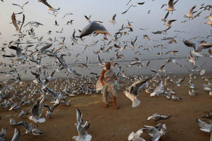 Уходящий 2016 й глазами фотокорреспондентов Reuters: лучшие фото