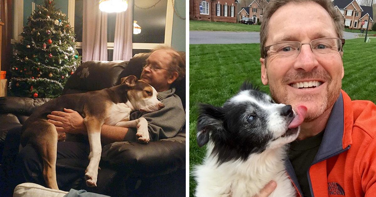 10 пап, которые НИ ЗА ЧТО не хотели заводить собаку