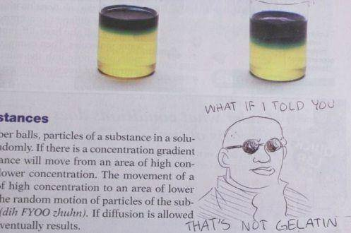 Это вам не усики подрисовать! 20 смешных и творческих актов вандализма в школьных учебниках