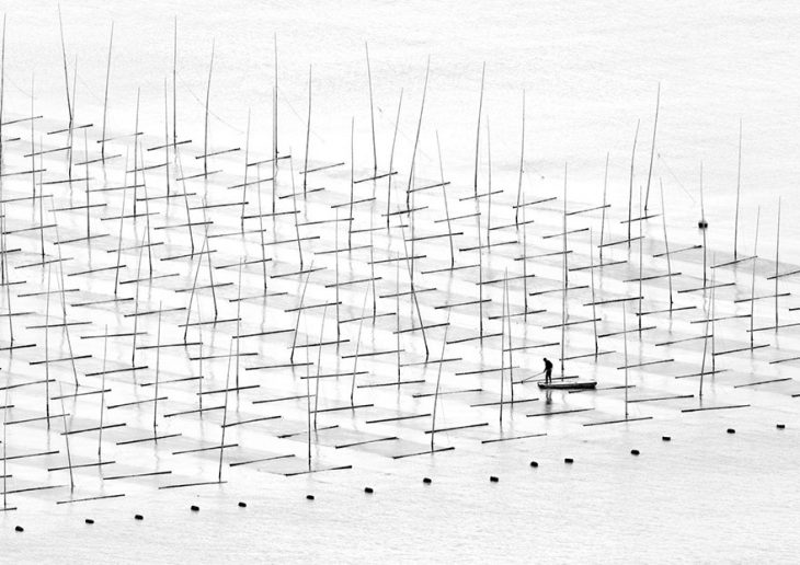 Самые умопомрачительные фото с конкурса «National Geographic Traveler Photo»