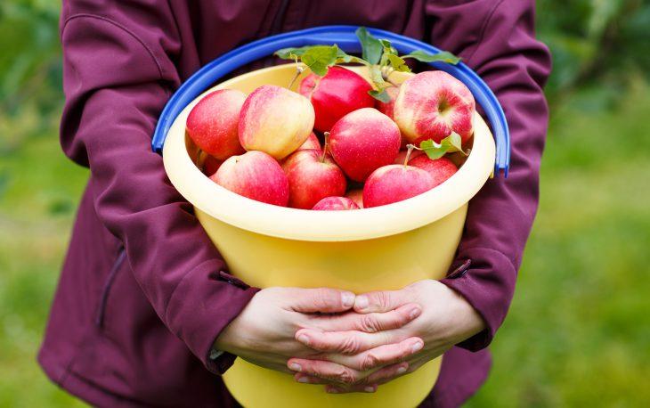 Как одна бабка сведром яблок удороги проучила хулиганов