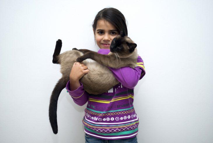 Ленивая дочь и ещё более ленивый кот