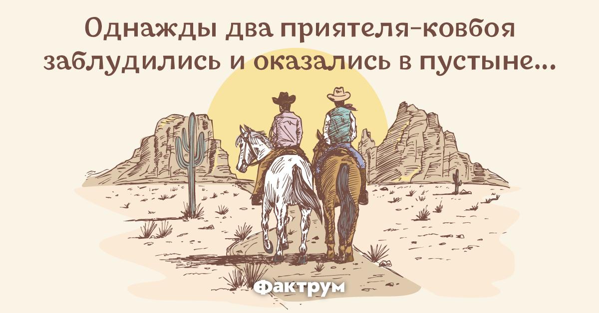 Анекдот про двух азартных ковбоев, наткнувшихся наиндейца