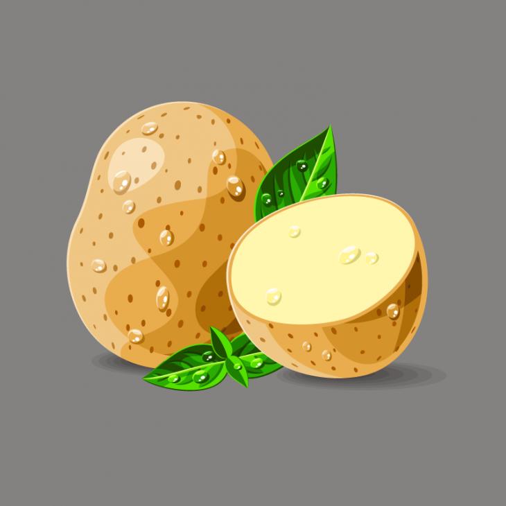 Анекдот про то, как вразных странах картошку выращивают