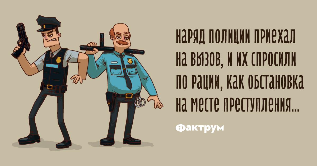 Анекдот про то, как наряд полиции на вызов приехал