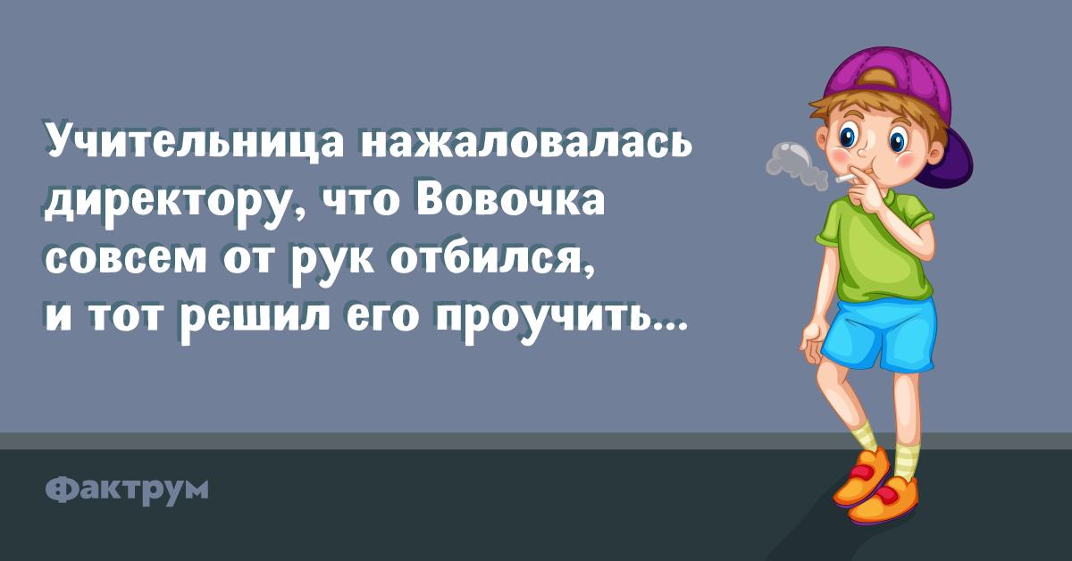 Анекдот про то, как директор Вовочку воспитывал