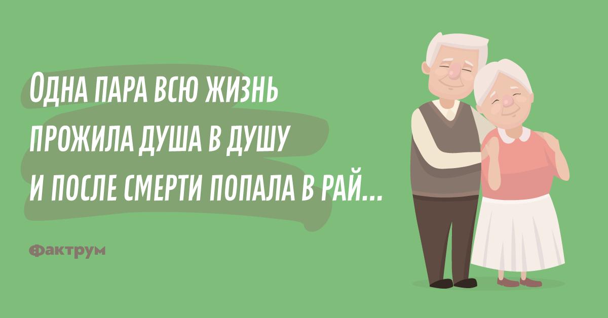Анекдот про старика истарушку, которые попали врай
