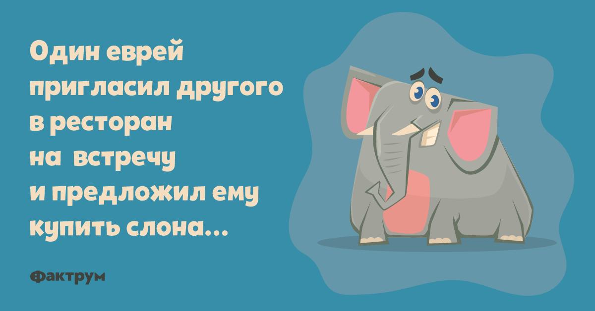 Анекдот о том, как один еврей другому слона продавал