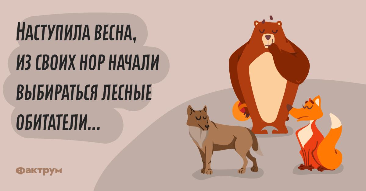Анекдот про встречу лесных зверей после долгой иголодной зимы