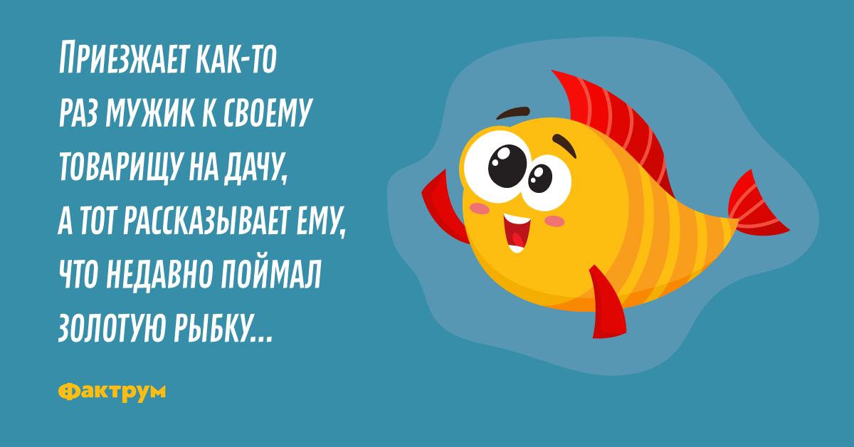 Анекдот про двух друзей иглуховатую Золотую рыбку