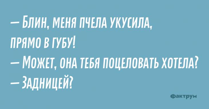 Свеженькие анекдоты, которые невозможно читать без улыбки