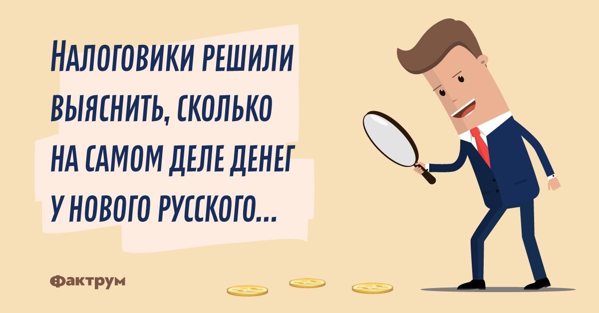 Анекдот про то, как налоговики нового русского проверяли