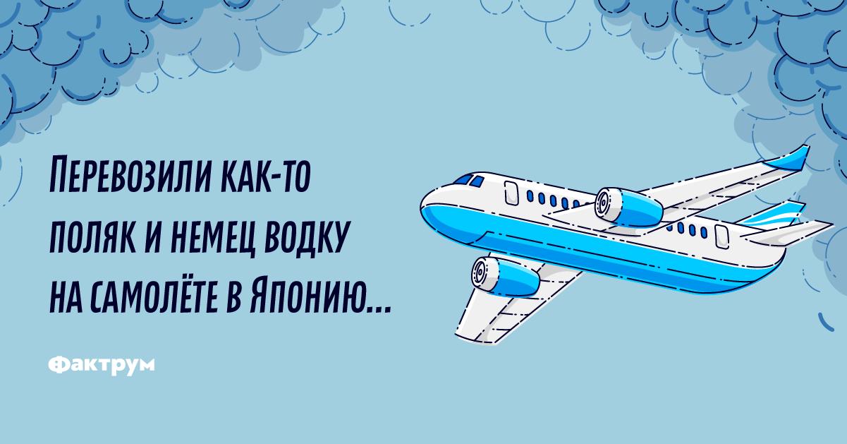 Анекдот про немца, поляка ирусского пилота, попавших вавиакатастрофу