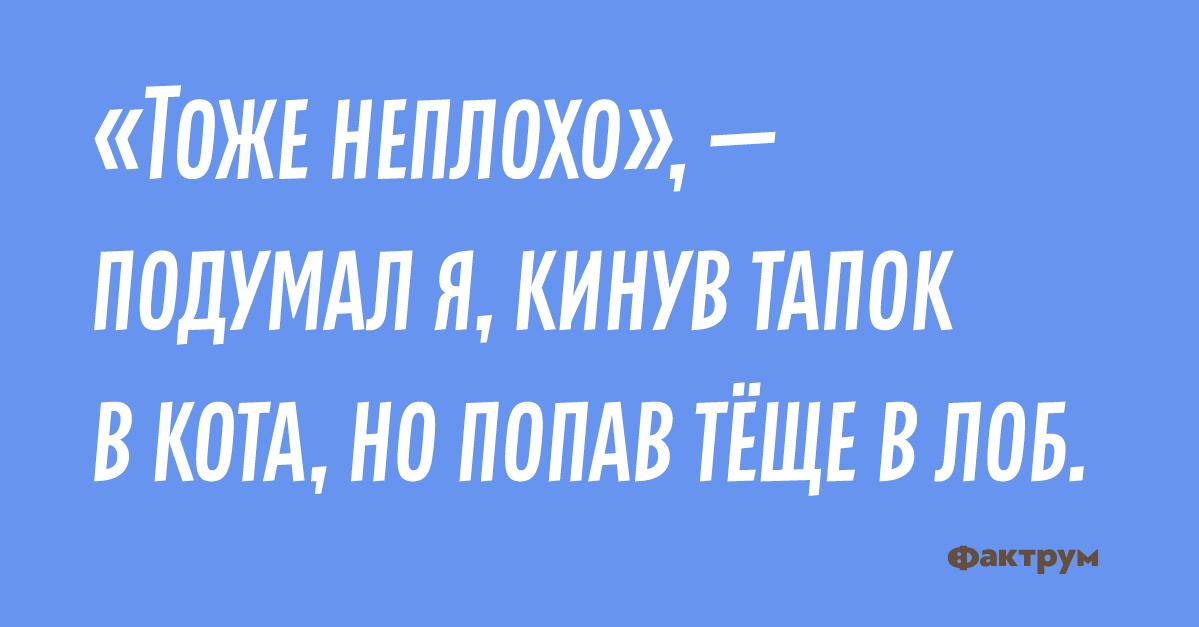 10 анекдотов сбескрайних просторов рунета