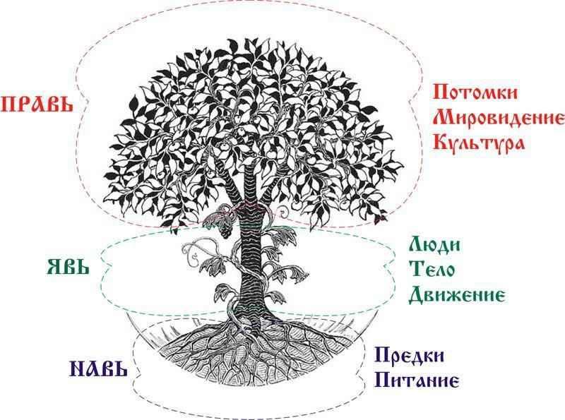 Части вселенной древних Славян
