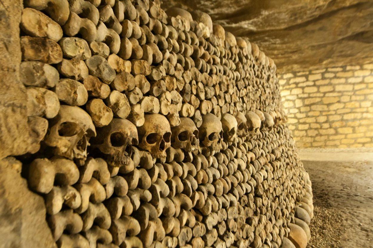 Стена из костей черепов
