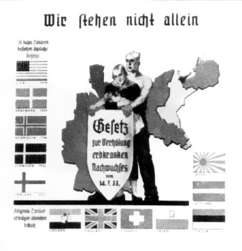 Немецкий плакат с флагами стран, где разрешалась принудительная стерилизация