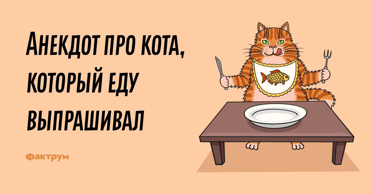 Анекдот про кота, который еду выпрашивал