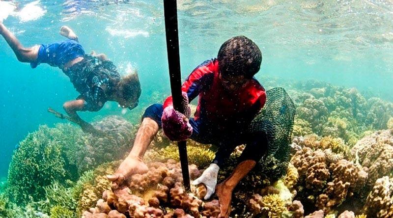 «Морские цыгане» — люди, изменённые водой