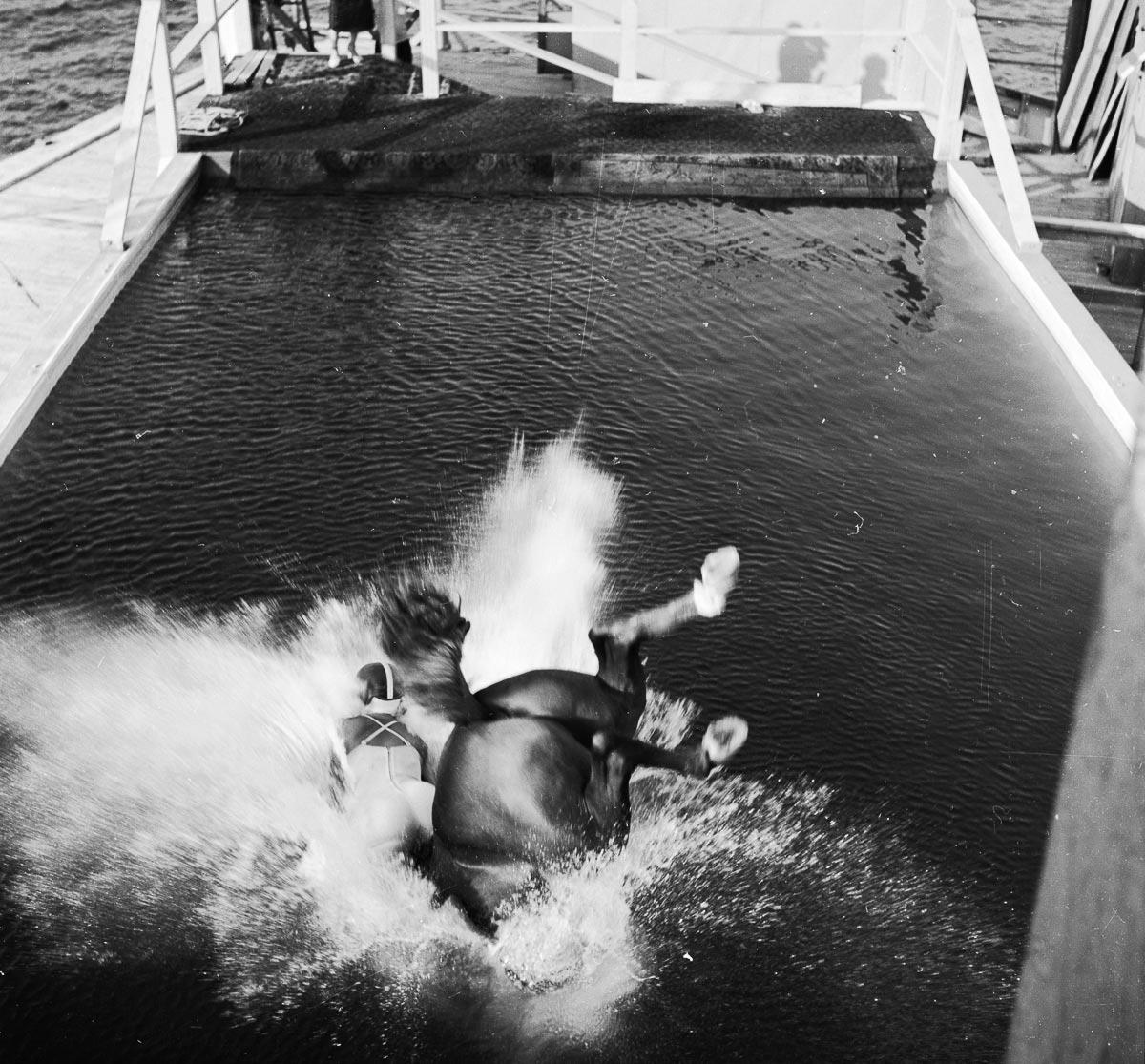 Приземление лошади в воду после прыжка
