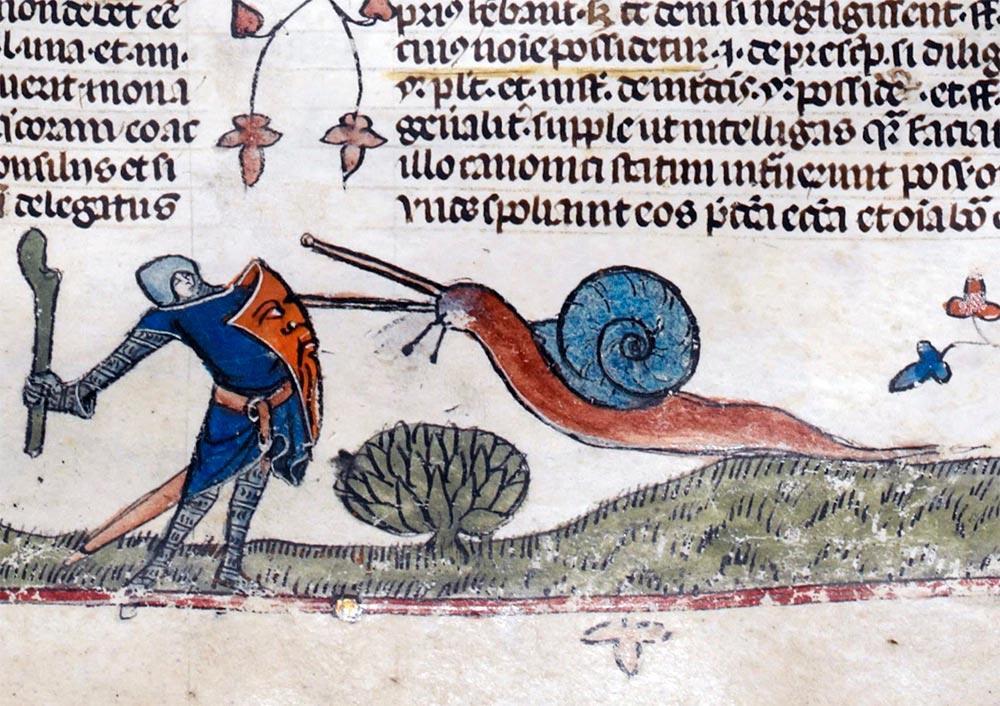 Рыцарь против гигантской улитки