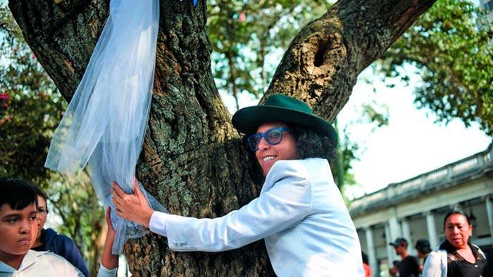 Ричард Торрес и дерево