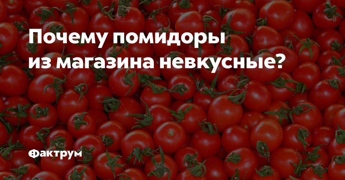 Почему помидоры измагазина невкусные?
