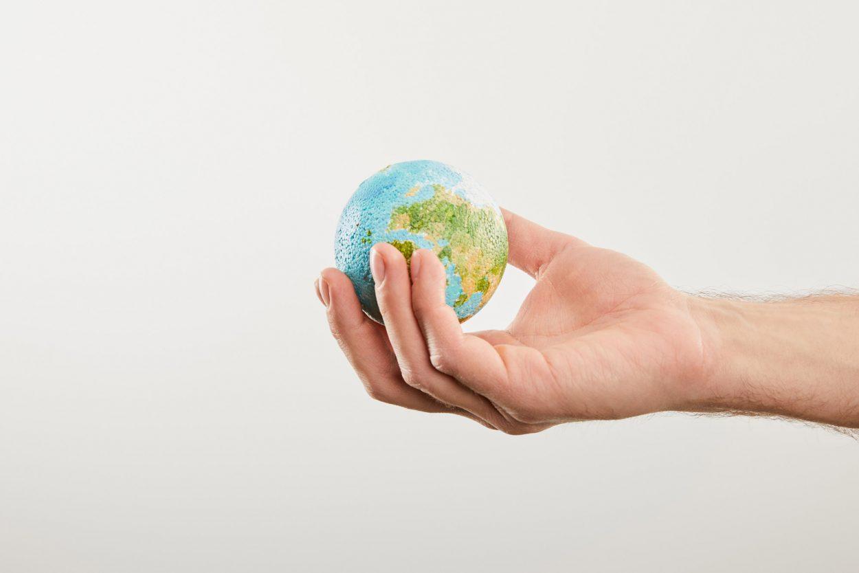Познаём мир вместе