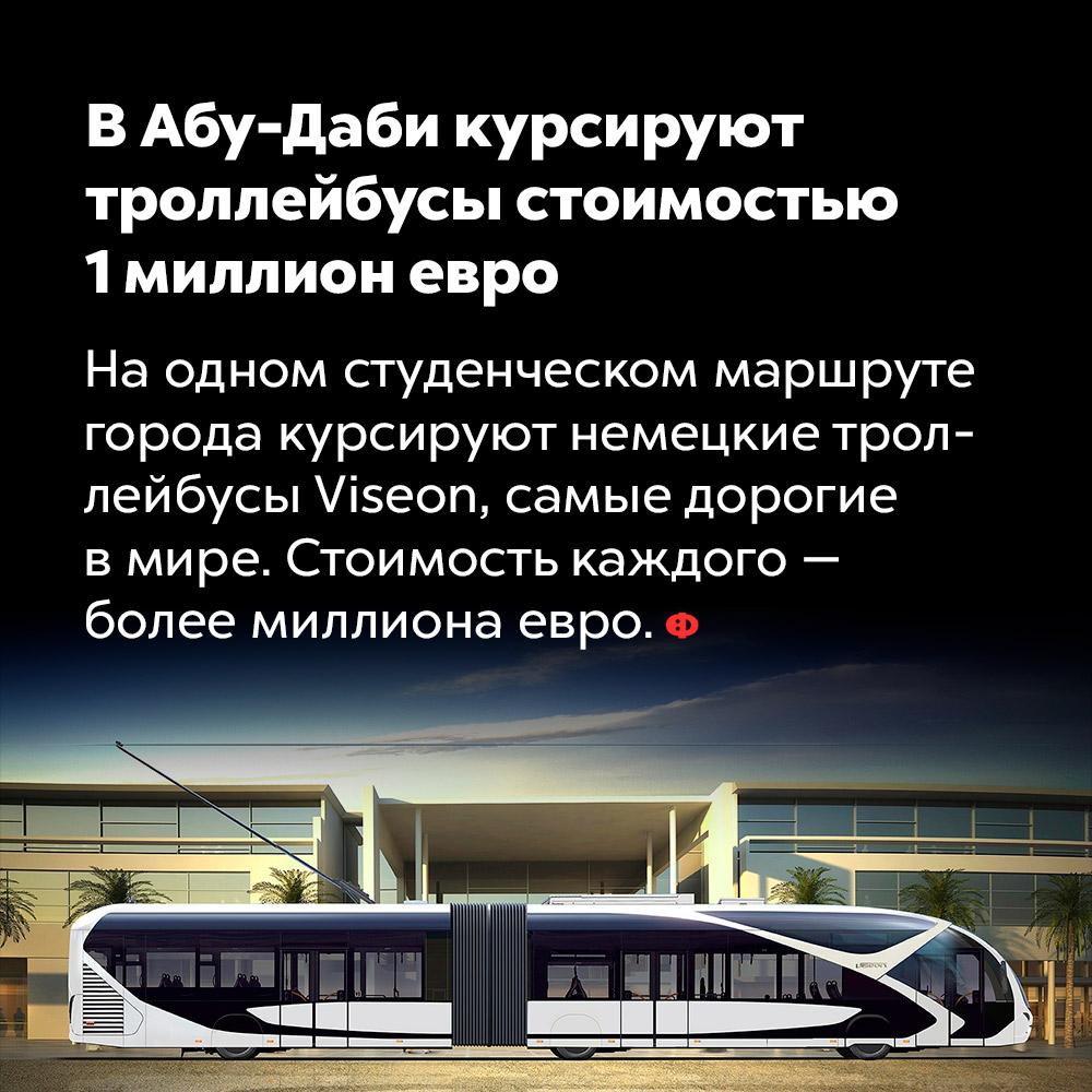 В Абу-Даби курсируют  троллейбусы стоимостью 1 миллион евро. На одном студенческом маршруте города курсируют немецкие троллейбусы Viseon, самые дорогие в мире. Стоимость каждого — более миллиона евро.