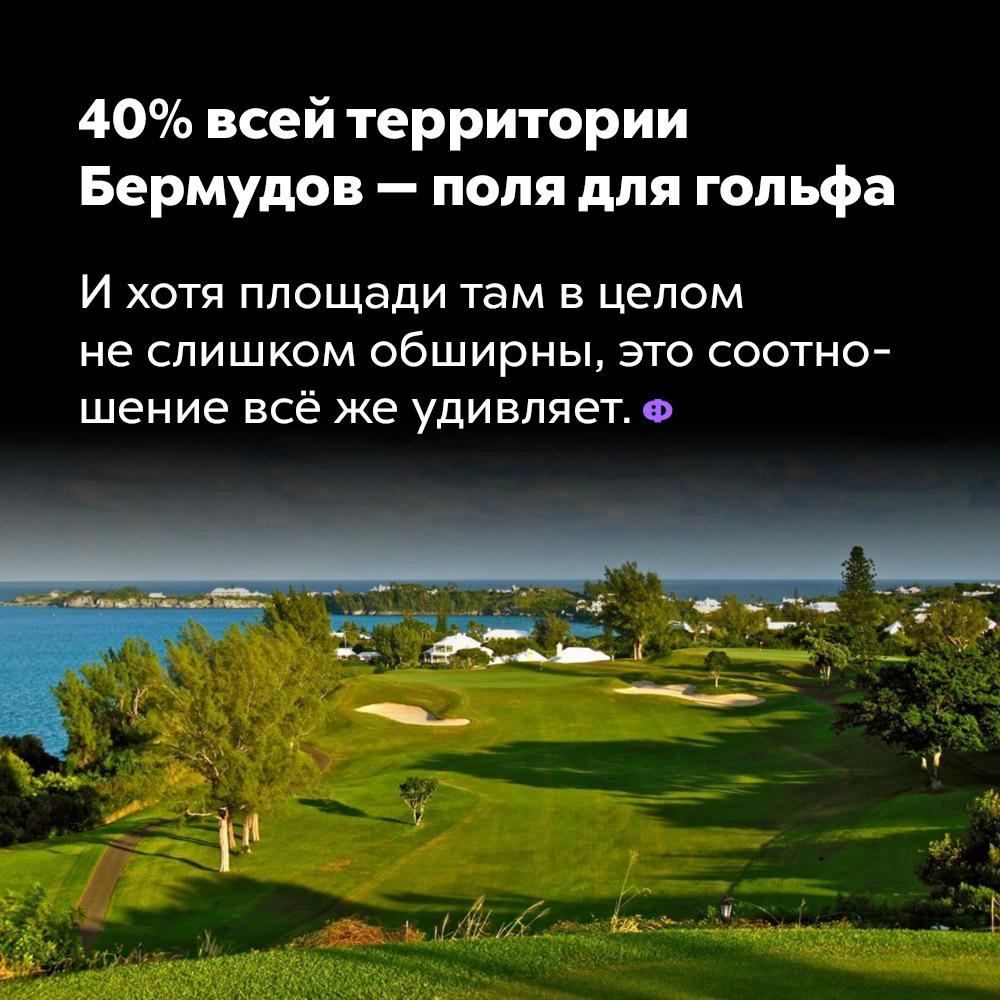 40% всей территории Бермудов— поля для гольфа. И хотя площади там в целом не слишком обширны, это соотношение всё же удивляет.