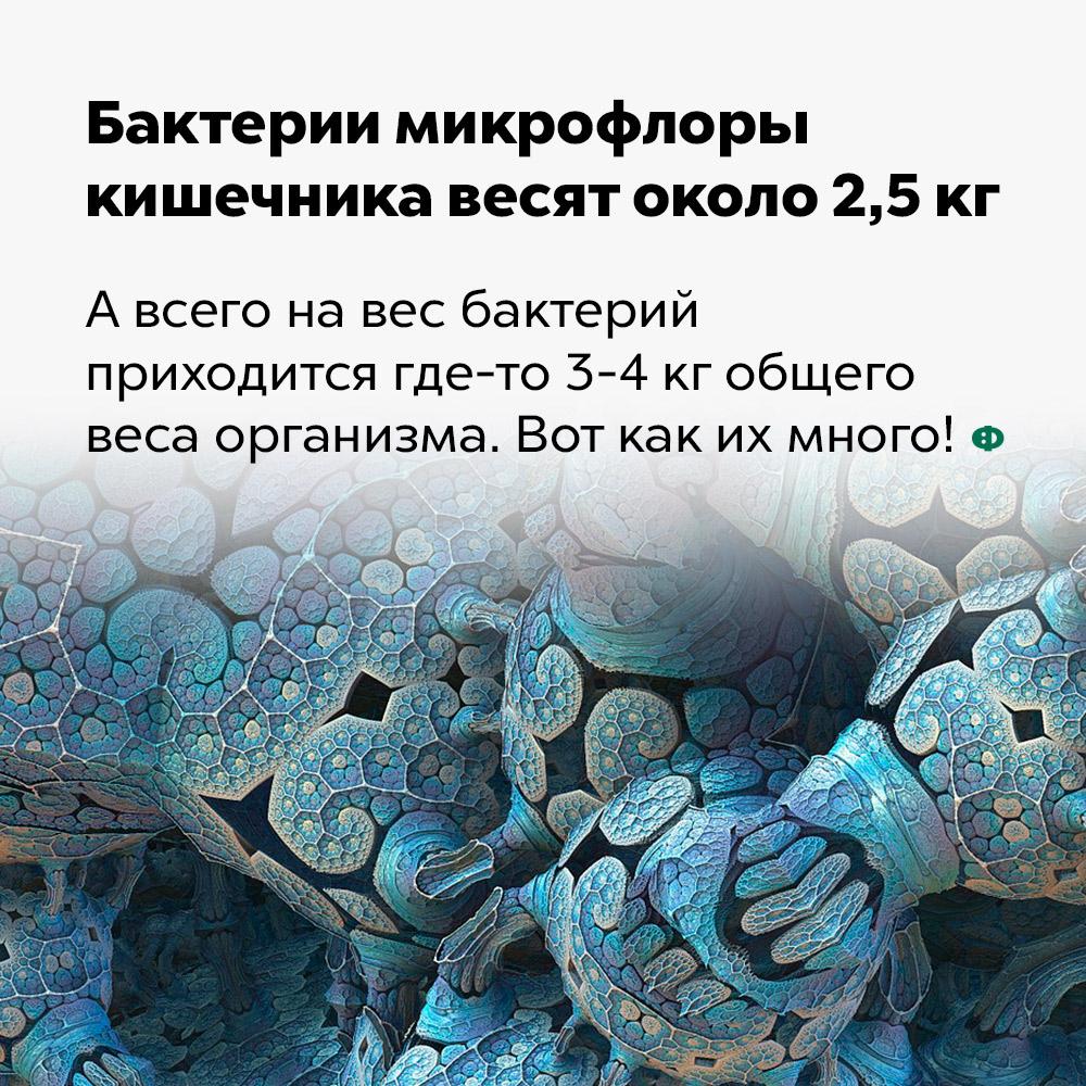 Бактерии микрофлоры кишечника весят около 2,5 кг.