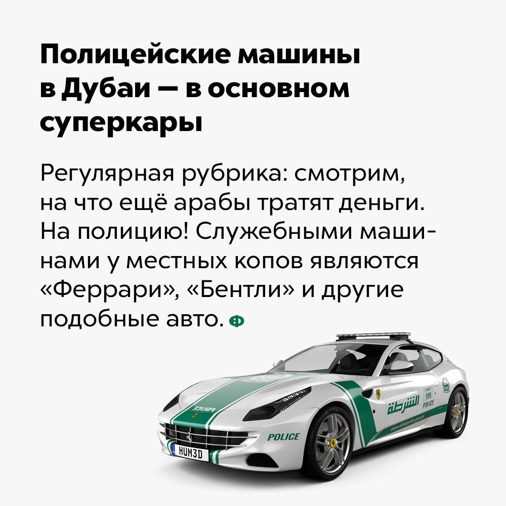 Полицейские машины вДубаи — восновном суперкары. Регулярная рубрика: смотрим, на что арабы тратят свои деньги. На полицию! Служебными машинами у местных копов являются «Феррари», «Бентли» и другие подобные авто.