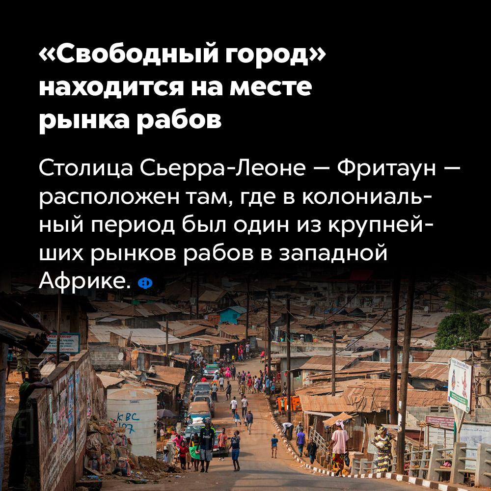«Свободный город» находится наместе рынка рабов.