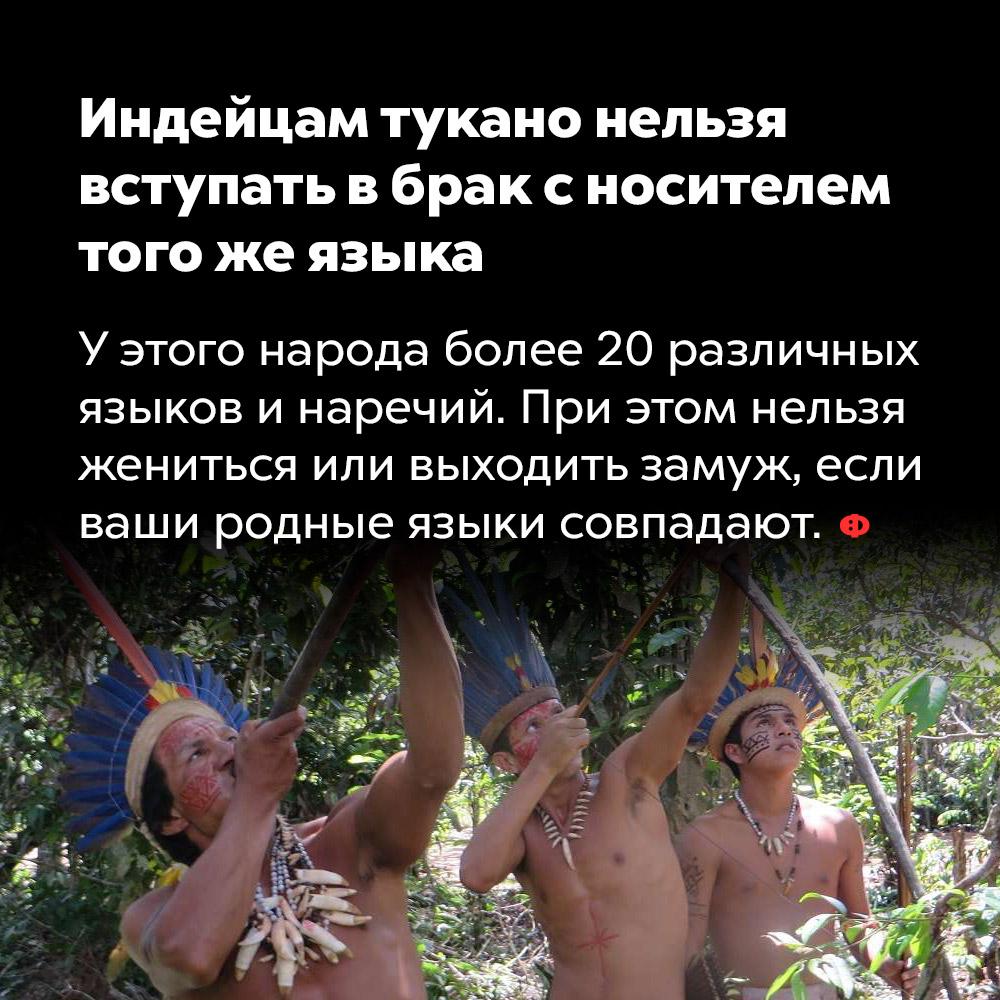 Индейцам тукано нельзя вступать вбрак сносителем того жеязыка. У этого народа более 20 различных языков и наречий. При этом нельзя жениться или выходить замуж, если ваши родные языки совпадают.